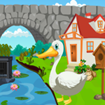 Cute Swan Rescue Games4King