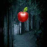 Dark Tree Forest Escape FunEscapeGames