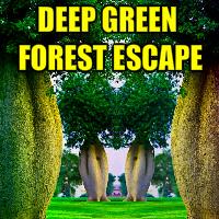 Deep Green Forest Escape YalGames