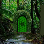 Deep Rainforest Escape Games2Rule