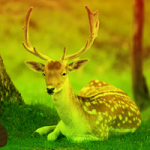 Deer Forest Escape Games2Rule