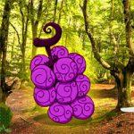 Devil Fruit Forest Escape WowEscape