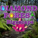 Diamond Forest BigEscapeGames