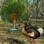 Dodo Bird Evolution WowEscape