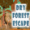 Dry Forest Escape