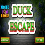 Duck Escape CrazeInGames