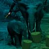 Elephant Forest Escape WowEscape