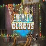 Enigmatic Circus Hidden247