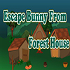 Escape Bunny From Forest House Escape 007 Games