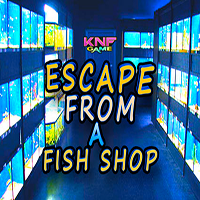 Escape From A Fish Shop KNFGames