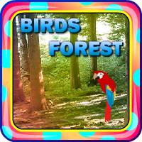 Escape From Birds Forest AvmGames