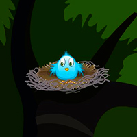 Escape From Palapa Hut TollFreeGames