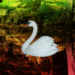 Escape From Swan Forest Games2Rule