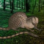 Escape Game Save The Civet Cat WowEscape