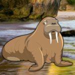 Escape Game Save The Walrus WowEscape