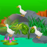 Escape Gardener AvmGames