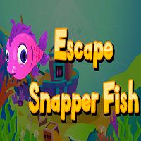 Escape Snapper Fish AjazGames