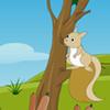 Escape Squirrel From American Island WowEscape