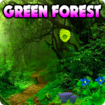 Escape The Green Forest AvmGames
