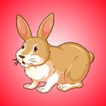 Escape The Rabbit AmvGames