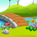 Escape The Tortoise ZooZooGames