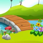 Escape The Tortoise ZooZooGames
