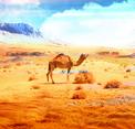 Escape from Sahara Algeria Eight Games
