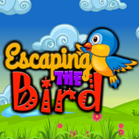 Escaping The Bird ENAGames