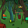 Evergreen Forest Escape