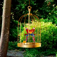 Exotic Bird Rescue Games2Rule
