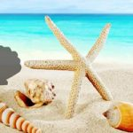 Fantasy Conch Beach Escape Games2Rule