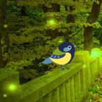 Fantasy Lighting Forest Escape WowEscape