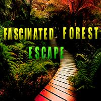 Fascinated Forest Escape AvmGames