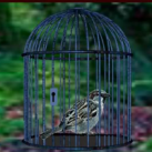 Finch Rescue From Cage EscapeGamesZone