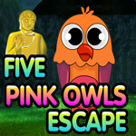 Five Pink Owl Escape GamesKing