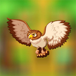 Flying Owl Escape AvmGames