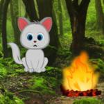 Forest Challenge Escape Games2Rule