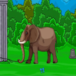 Forest Elephant Rescue Games2Jolly