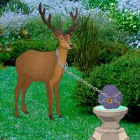 Forest Garden Deer Escape Games2Rule