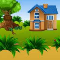 Forest Modern House Escape EscapeGamesZone