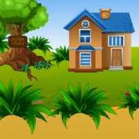 Forest Modern House Escape EscapeGamesZone