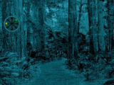 Forest Ostrich Escape Escape Games Zone