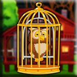 Forest Red Owl Escape Games2Jolly