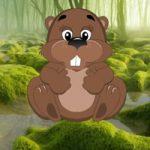 Funny Beaver Land Escape WowEscape