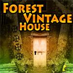 G4K Forest Vintage House Escape Games 4 King