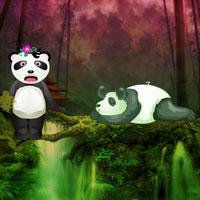 Giant Panda Forest Escape WowEscape