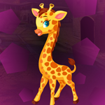 Giraffe Cub Escape Games4King