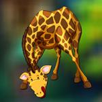Giraffe Escape AvmGames