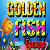 Golden Fish Escape