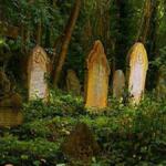 Graveyard Escape 8BGames